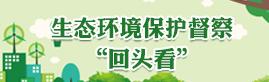 生态环境保护督察回头看